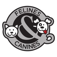 Felines and Canines