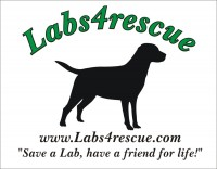 Labs4rescue, Inc.
