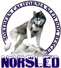 Northern California Sled Dog Rescue